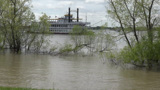 louisiana mississippi steamboat - steam liner stock videos & royalty-free footage