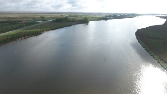 louisiana river fly with bird in distance - drone aerial 4k everglades, swamp bayou with wildlife alligator nesting ibis, anhinga, cormorant, snowy egret, spoonbill, blue heron, eagle, hawk, cypress tree 4k nature/wildlife/weather drone aerial video - louisiana stock-videos und b-roll-filmmaterial