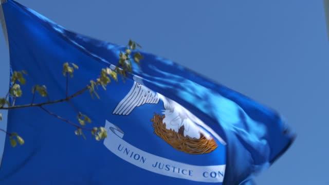 bandiera dello stato della louisiana che sventola nella brezza - louisiana video stock e b–roll