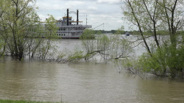 louisiana steamboat on flooded mississippi.mov - river mississippi stock videos & royalty-free footage