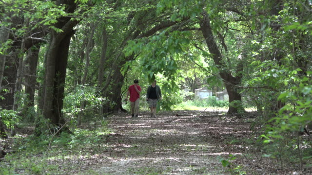 louisiana woman and boy walking up path in woods zoom out - one teenage boy only stock videos & royalty-free footage