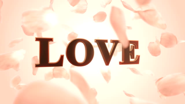 love and rose petals (loopable) - rose petal stock videos and b-roll footage