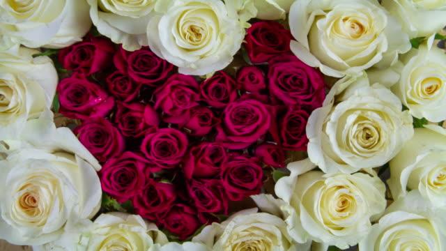愛ハート バラの背景 - 植物 バラ点の映像素材/bロール