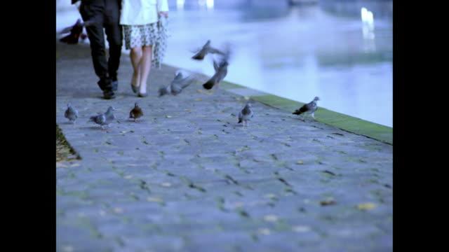 love in paris - river seine stock videos & royalty-free footage