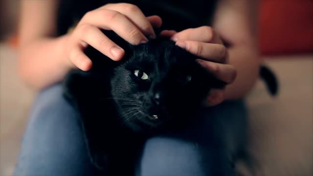 Ich liebe meine Katze