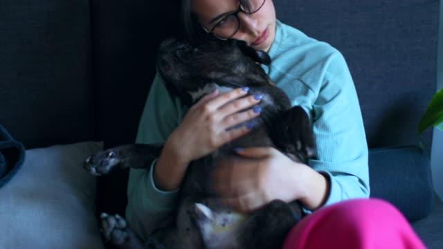 犬と素敵な午後 - ペットの飼い主点の映像素材/bロール