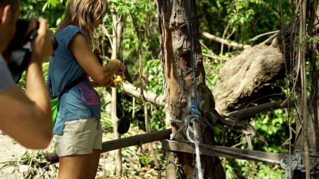 サルに餌をやって写真を撮る素敵なカップル - 牧夫点の映像素材/bロール