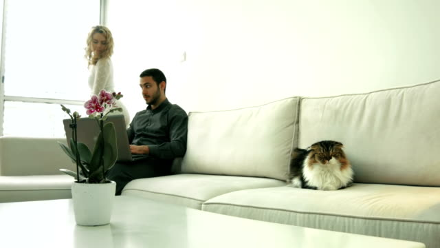 Lovely couple sitting on sofa with a laptop and cat