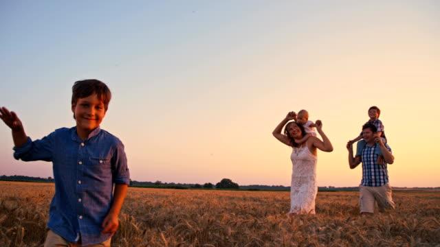 slo mo schöne familie gehen in weizen feld bei sonnenuntergang - familie mit drei kindern stock-videos und b-roll-filmmaterial