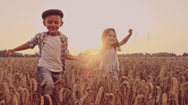 vídeos y material grabado en eventos de stock de mo encantadora de san luis obispo a los niños en el campo de trigo - imagen virada