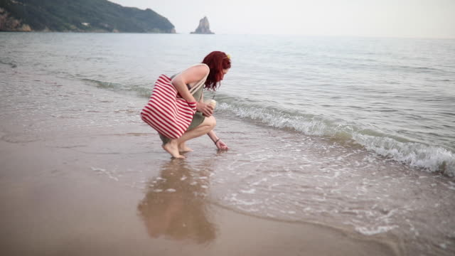 lovely young woman collecting seashell on her beach holiday - animal shell stock videos & royalty-free footage