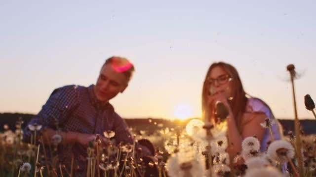 slo mo loving couple blowing dandelions - dandelion stock videos & royalty-free footage