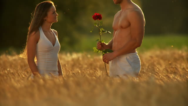stockvideo's en b-roll-footage met hd: loving couple in wheat - halfgekleed