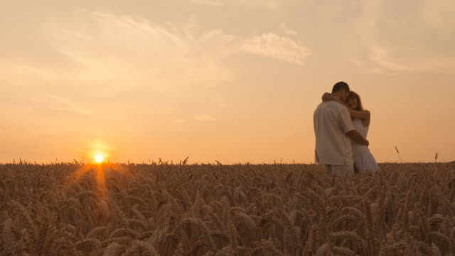 HD DOLLY: Loving couple in wheat