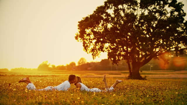 WS Loving couple kissing in grass at sunset