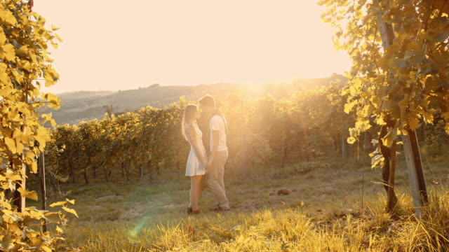 stockvideo's en b-roll-footage met verliefde paar zoenen in de wijngaard - zonnejurk