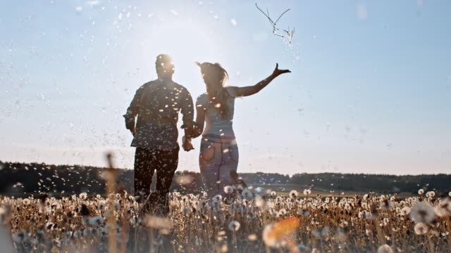 slo mo loving couple running among dandelion seeds - blowing stock videos and b-roll footage