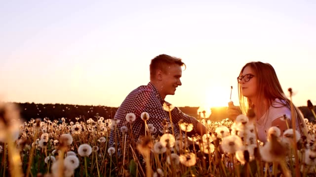 SLO MO Loving couple sitting among dandelions at sunset