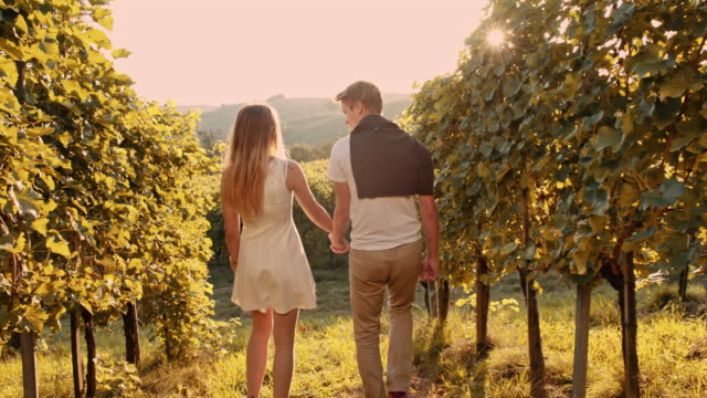 loving couple walking through the vineyard - vineyard stock videos and b-roll footage