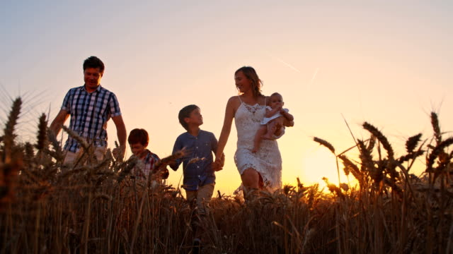 slo mo loving family in wheat field at sunset - family with three children stock videos & royalty-free footage