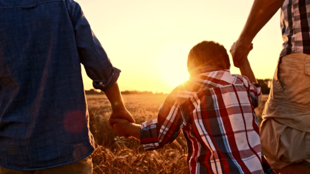 slo mo loving family walking in wheat field at sunset - family with three children stock videos & royalty-free footage