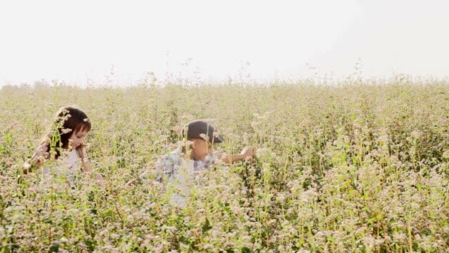 SLO MO Loving kids running through buckwheat field