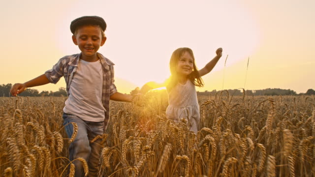 slo mo loving kids walking in the wheat field - holding hands stock videos & royalty-free footage