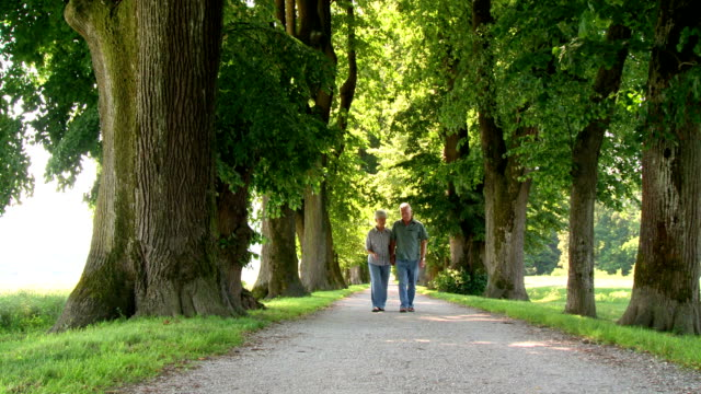 hd dolly: loving senior couple walking in the park - treelined stock videos & royalty-free footage