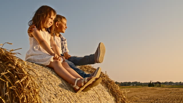 ws loving siblings sitting on a hay bale - hay stock videos & royalty-free footage