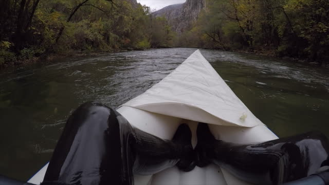 loving this sport - sculling video stock e b–roll