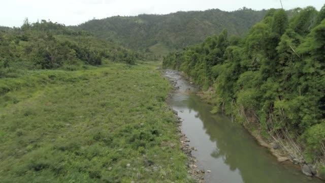 low aerial flyover of rio culebra snake river in orocovis puerto rico - スネーク川点の映像素材/bロール