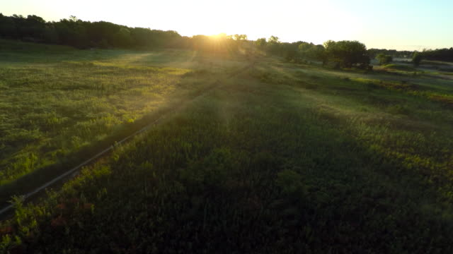 Low Aerial Over Sunlit Prairie