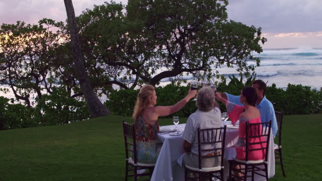 vidéos et rushes de low aerial shot of a group of friends toasting while having dinner outside during sunset by the beach - turtle bay oahu