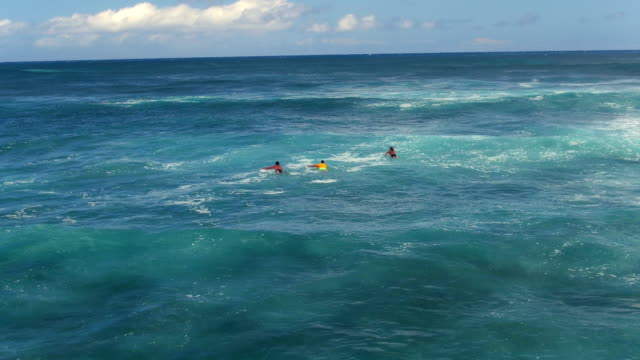 low aerial shot of three surfers paddling out - kahuku stock videos & royalty-free footage