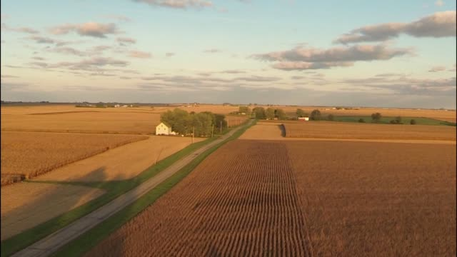 Low aerial shot rises towards a John Deere tractor and a pair of grain silos and flies over them revealing a vast cornfield in background as the sun...