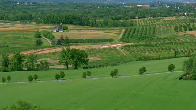 low altitude aerial mcu of scenic farm with large apple orchards near hershey, pa - ペンシルベニア州点の映像素材/bロール