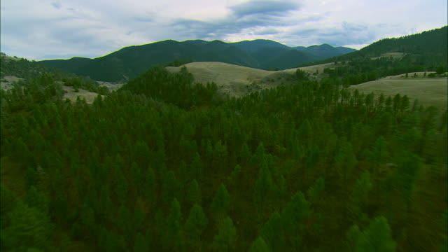 vídeos de stock e filmes b-roll de low altitude forward pov aerial of rolling foothills of the spanish peaks mountain range near bozeman, mt - montana