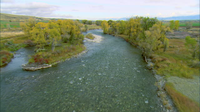 vidéos et rushes de low altitude forward pov flight along the gallatin river in autumn near bozeman, mt - bozeman