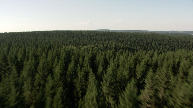 low and fast over thuringia forest - turingia video stock e b–roll