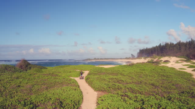 low angle aerial shot of a man riding a segway on the beach - turtle bay hawaii stock videos & royalty-free footage
