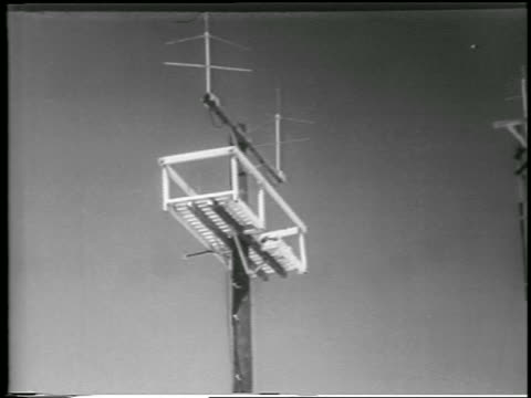 vidéos et rushes de b/w 1952 low angle antenna / yucca flats nevada / newsreel - 1952