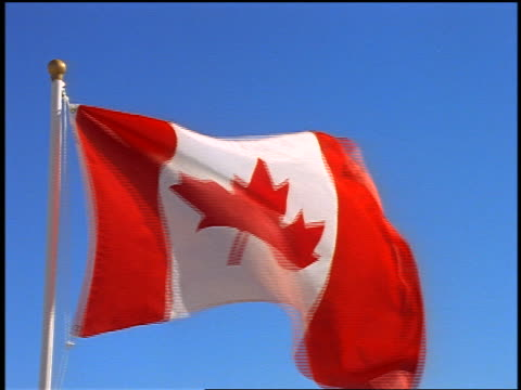 low angle PAN Canadian flag blowing in wind / blue sky in background