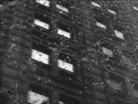 vidéos et rushes de b/w 1928 low angle car point of view confetti falling past building windows during parade / chicago / documentary - 1928