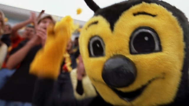 low angle close up bee sports mascot dancing around / cheering crowd in background - low angle view stock-videos und b-roll-filmmaterial