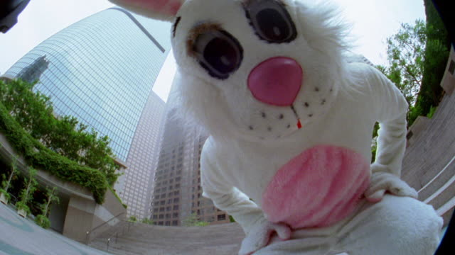 low angle close up man in rabbit costume bending down and looking into camera with office buildings in background / low angle - rabbit costume stock videos & royalty-free footage