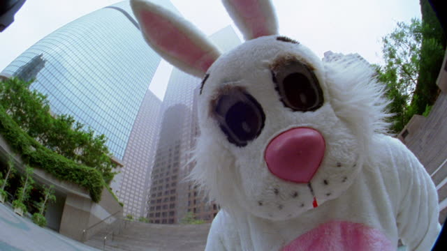 low angle close up man in rabbit costume looking into camera before running up staircase towards office buildings - rabbit costume stock videos & royalty-free footage
