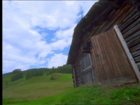 low angle cow exiting barn on hilly pasture + passing camera - barn点の映像素材/bロール
