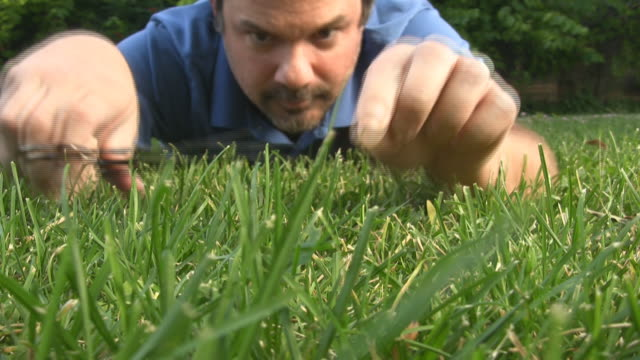 low angle crazy man cutting grass with scissors