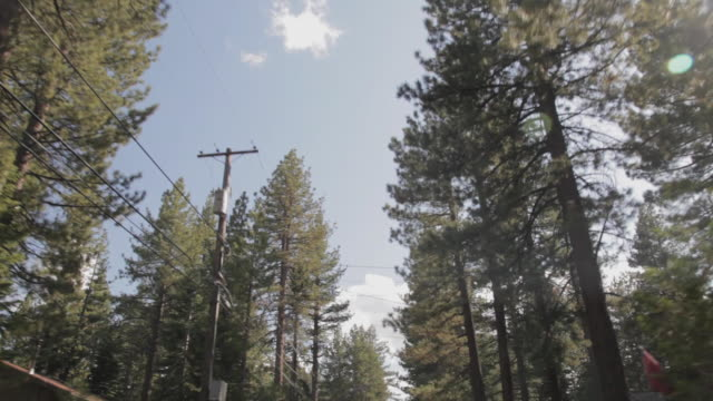 low angle pov driving through lake tahoe - telegraph pole stock videos and b-roll footage