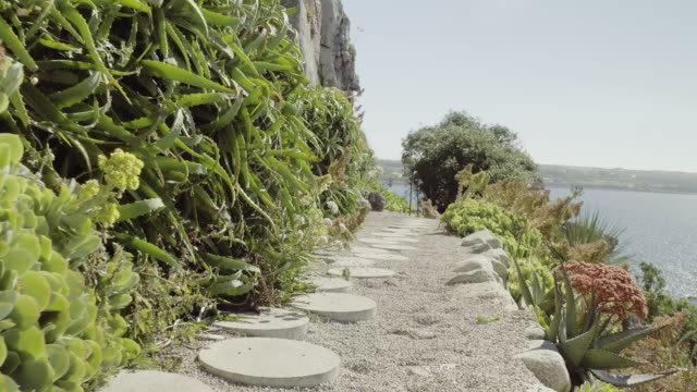 low angle, garden on st. michael's mount uk - cornwall england stock videos & royalty-free footage